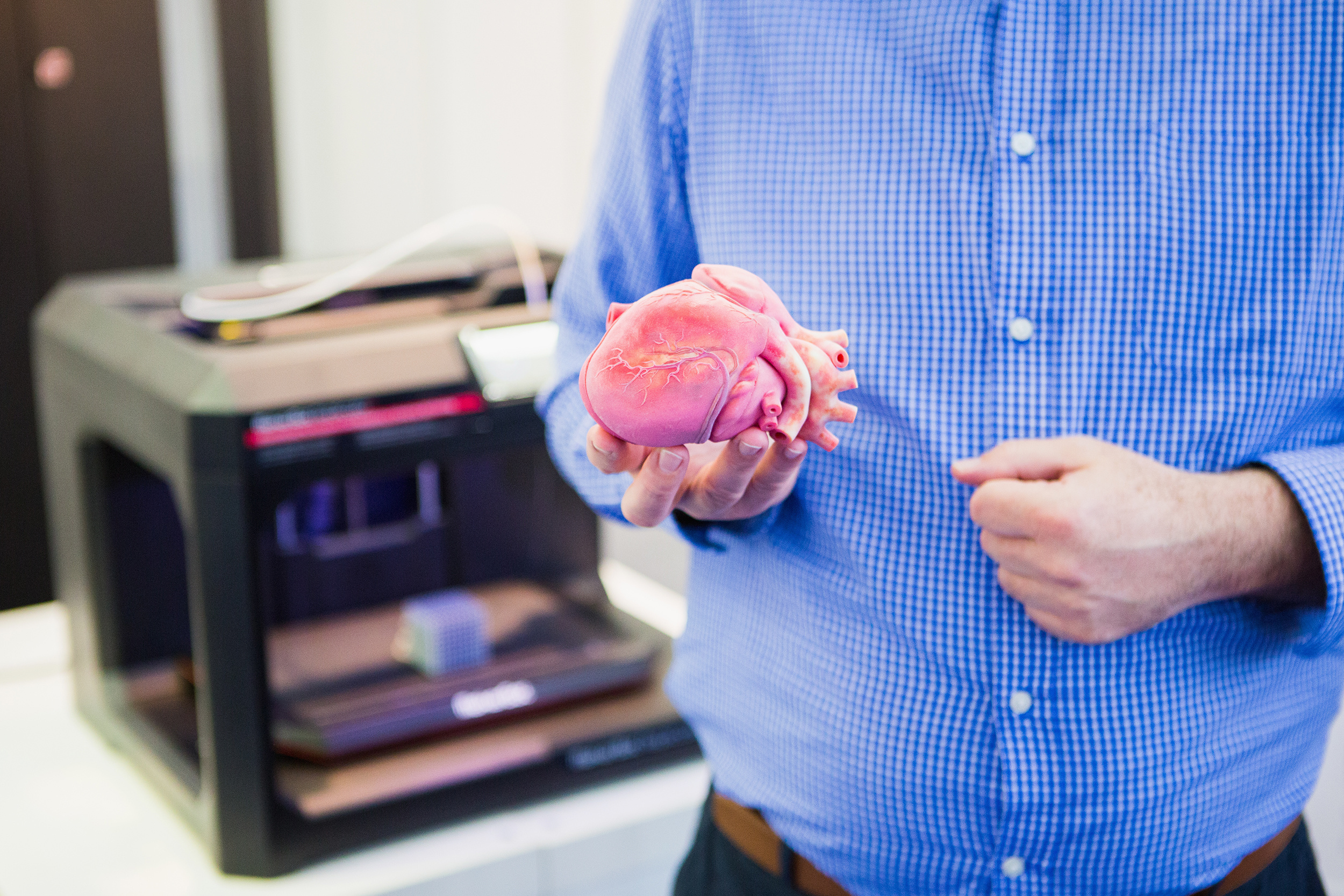 The engineer demonstrates the heart printed on a 3d printer