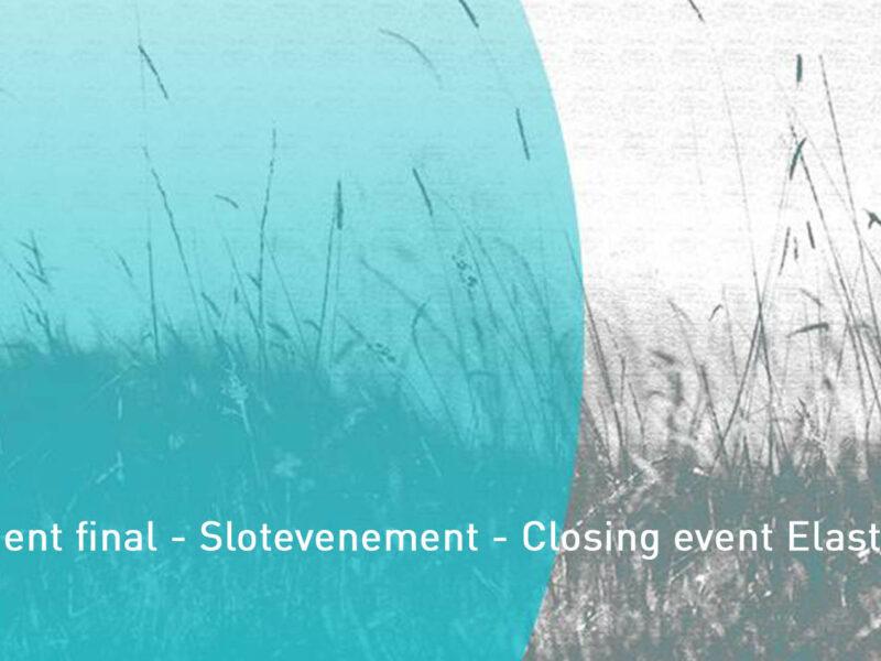 Elasto-Plast webinar